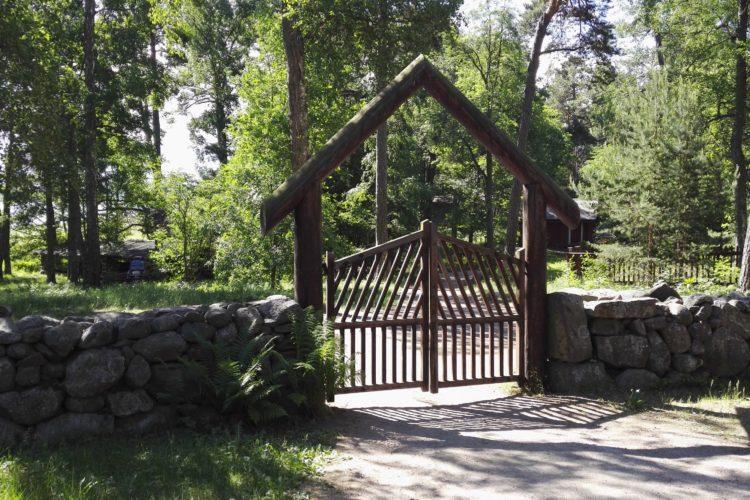 portti vihreässä luonnossa