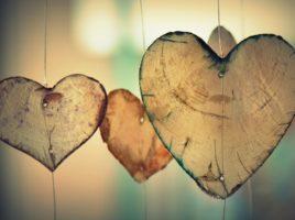 puisia sydämiä.