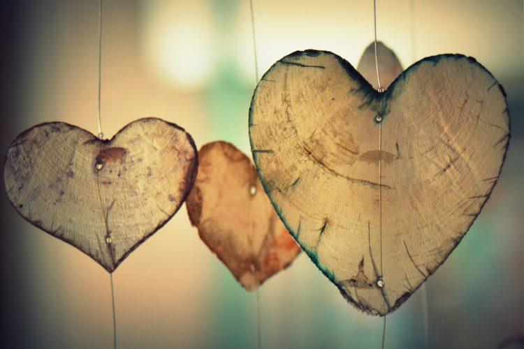 puisia sydämiä