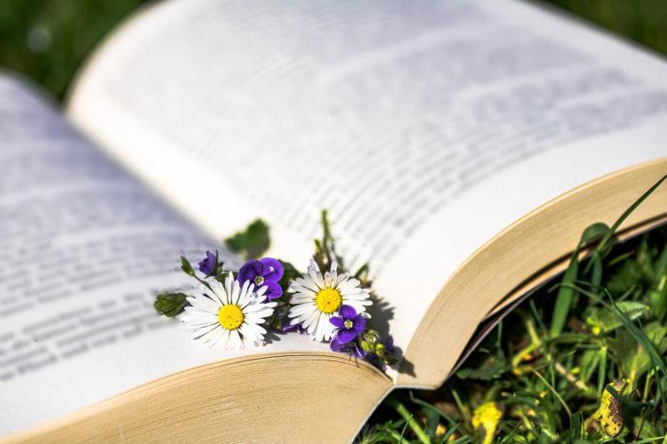 Kirjan päällä päivänkakkaroita ja muita kukkia.