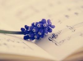 Violetti kukka nuottivihkon päällä.